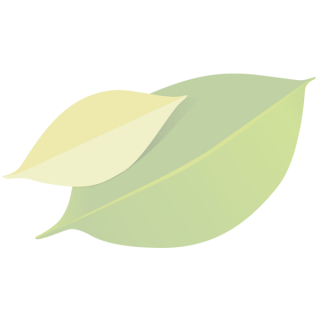 Biobrush Zahnbürste orange