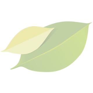 Blümbrie mit Gewürzblüten